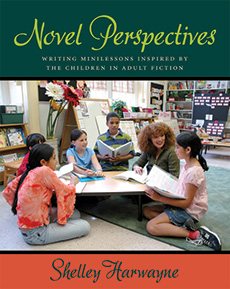 Novel Perspectives cover