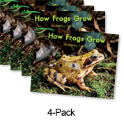 How Frogs Grow (Green System)