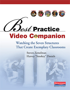 Best Practice Video Companion