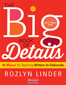 The Big Book of Details cover