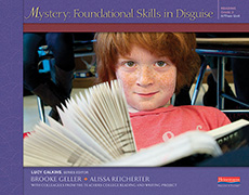 Mystery: Foundational Skills in Disguise, Grade 3 cover