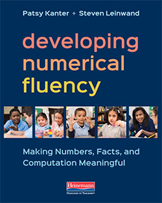 Developing Numerical Fluency cover
