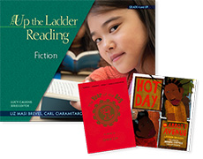 Up the Ladder Reading: Fiction Bundle cover