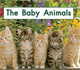 The Baby Animals (Kindergarten Getting Started Lap Books)